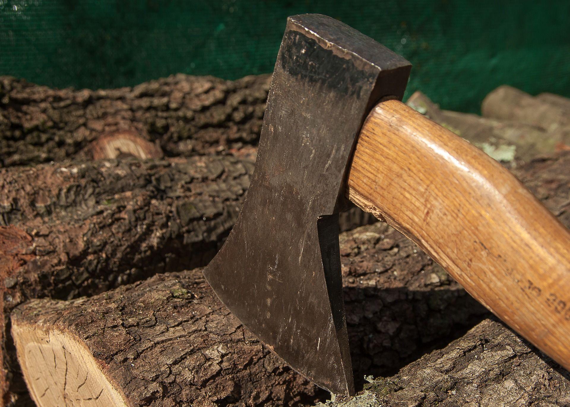 Quand Acheter Son Bois De Chauffage tout ce qu'il faut savoir sur le bois de chauffage