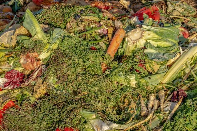 compost-dechets-cuisine