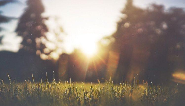 aerer-sa-pelouse