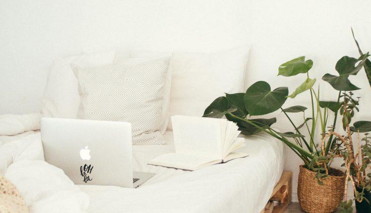 meubles-palettes-recuperation