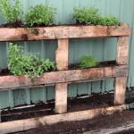 mur-vegetal-palette