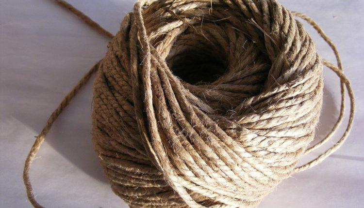 chanvre-fibre-ecologique
