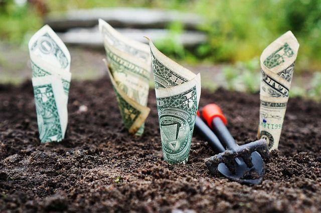 economies-jardin-compost