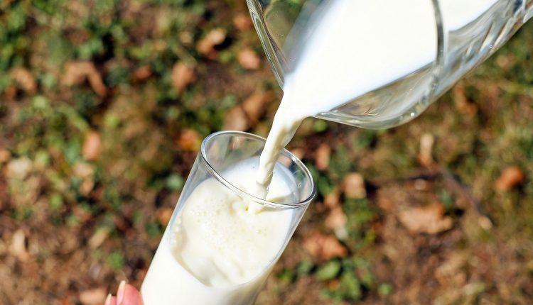 lait-biologique