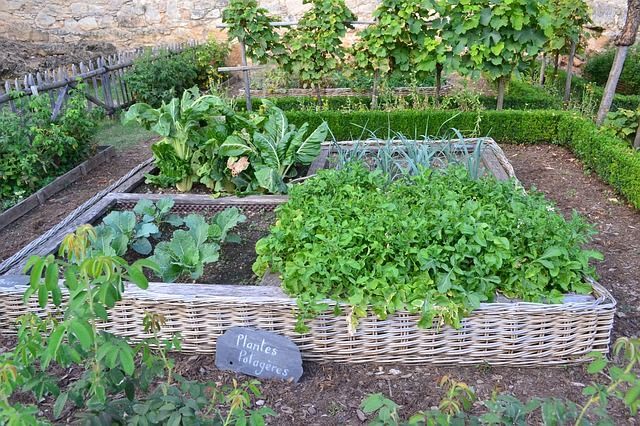 jardin-bio