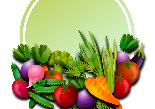 legumes-illustres