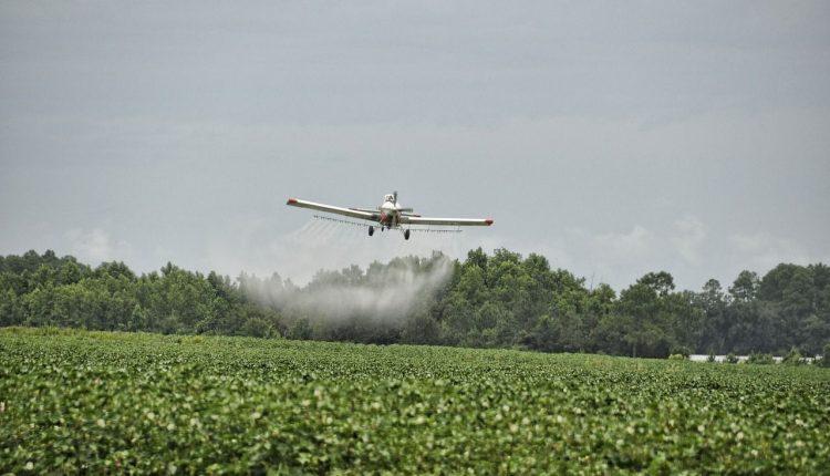 pesticides-champ