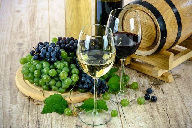 polyphénols-vin