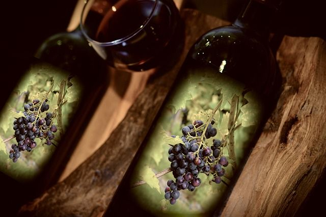 vin-bio-nouveauté