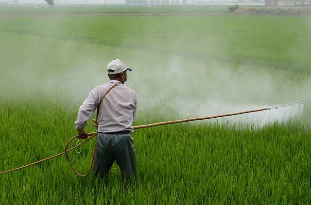 liens-pesticides-parkinson