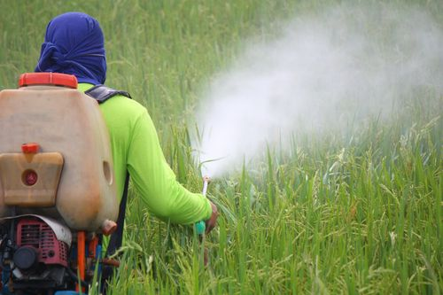 pesticides-cancer-enfant