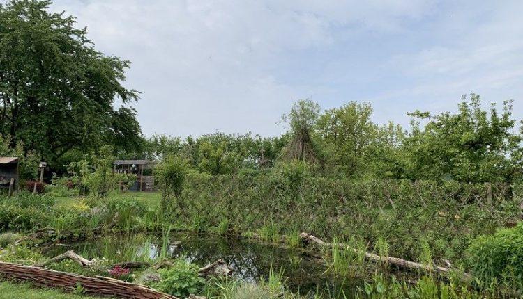 permaculture-eau