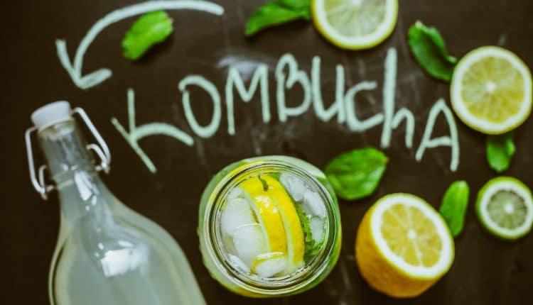 kombucha-recette