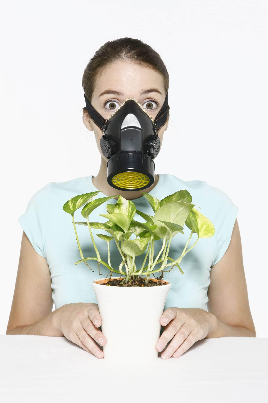 polluant-air