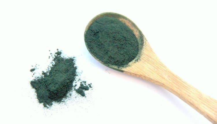 spiruline-algue