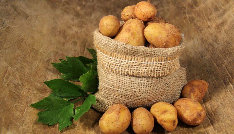 stockage-pommes-de-de-terre-jute