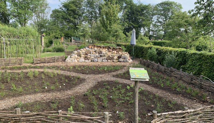 mulch-jardin