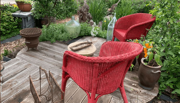 patio-permaculture