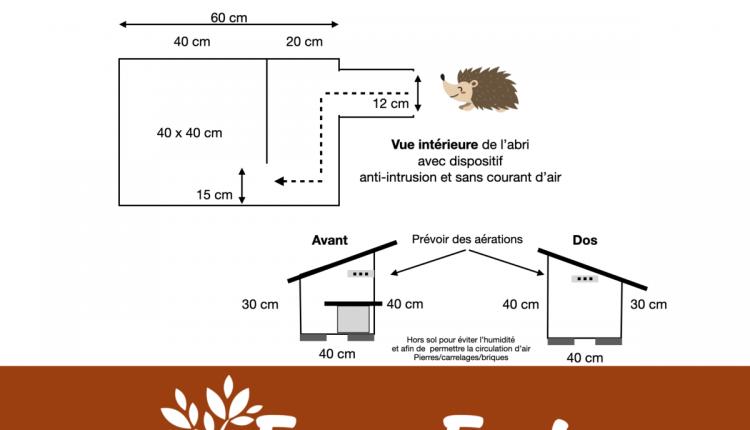 plan-abri-herisson